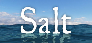 Cover art of Salt - PC